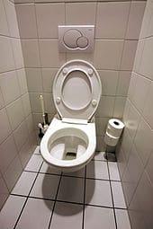 170px-Toilettes_mg_3872b